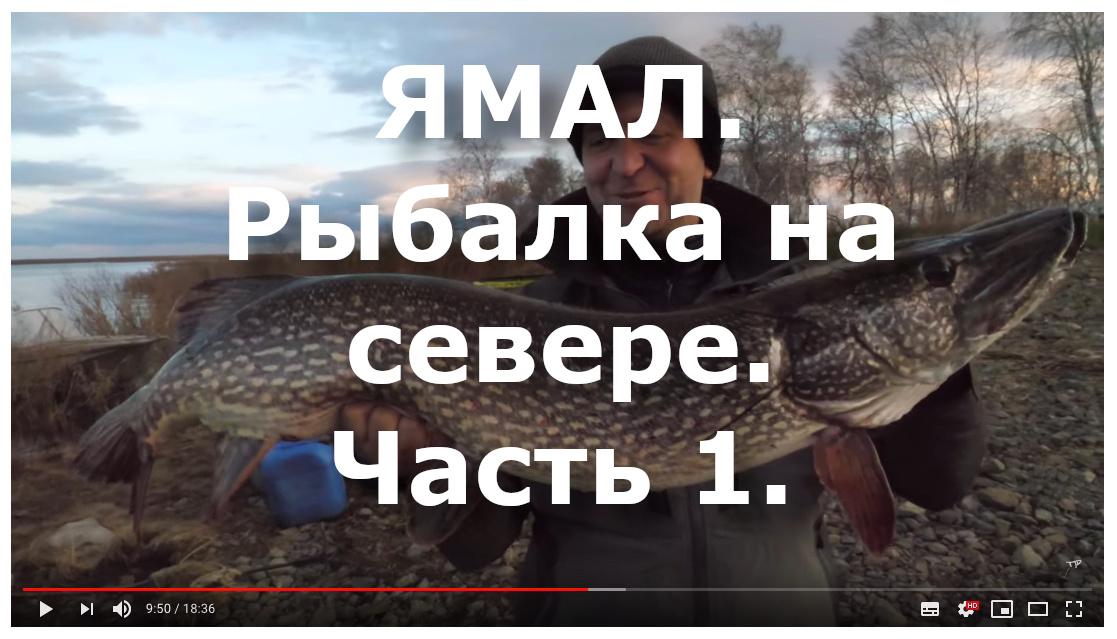 Ямал - рыбалка на севере 1