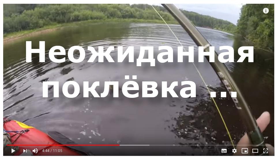 Неожиданная поклёвка, спасшая унылую рыбалку